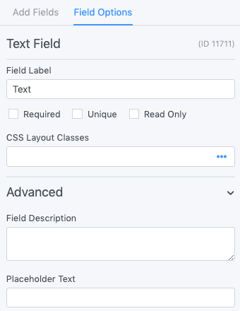 Single Line Text Field Options