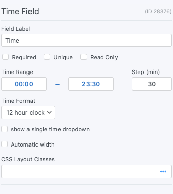 Time Field Options