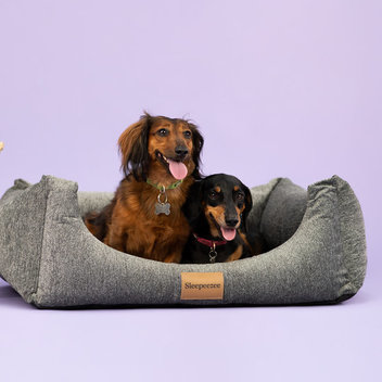 Test a Sleepeezee personalised dog bed for free