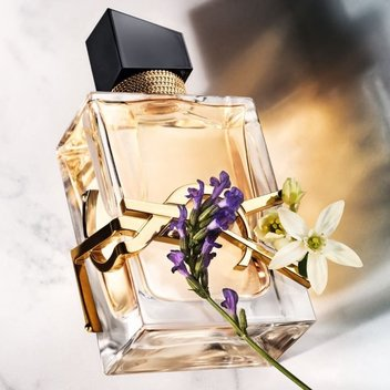 Test out the new Yves Saint Laurent Libre EDP for free