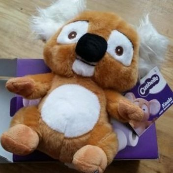 50 Kenny Koala soft toys up for grabs