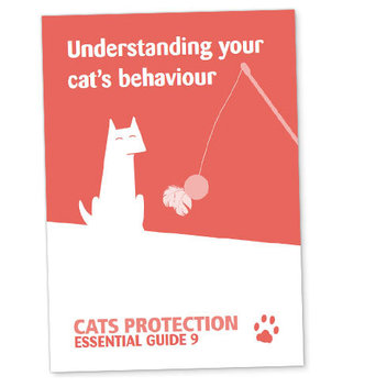 Claim a free Cat Behaviour Guide