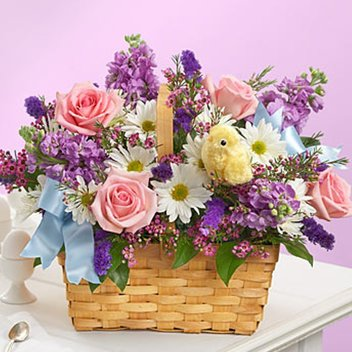 Score a stunning Spring hamper from Shelly Centre