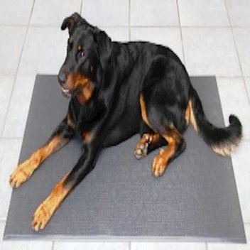 Free sample of Anti Bacterial Sanitized Pet Mat