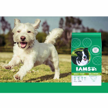 Request a free Iams ProActive Health for your dog