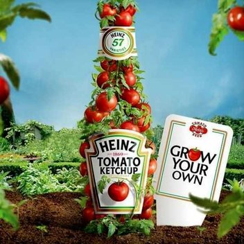 Free Heinz Tomato Seeds