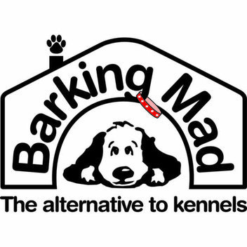 Win a £5,000 holiday from Barking Mad