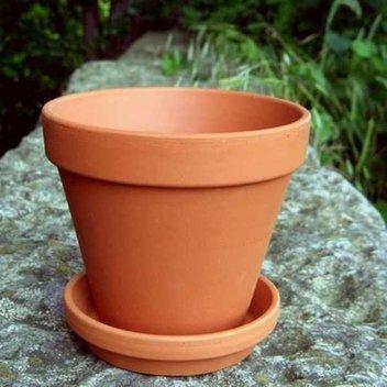 10,000 free Terracotta Plant Pots