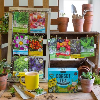 Make your garden glow with free seeds