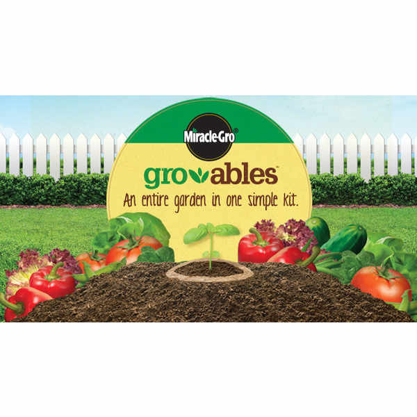 Enjoy a 50p off voucer for Miracle-Gro Gro-able Seed Pod