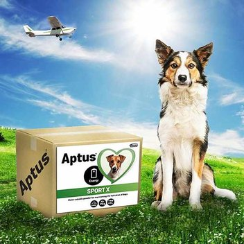 Order a free Apto-flex sample for your dog