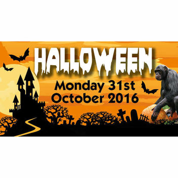 Free entry to Monkey World for Kids in Costume