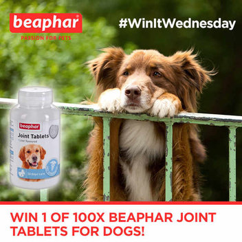 100 free Beaphar Joint Tablets for dogs