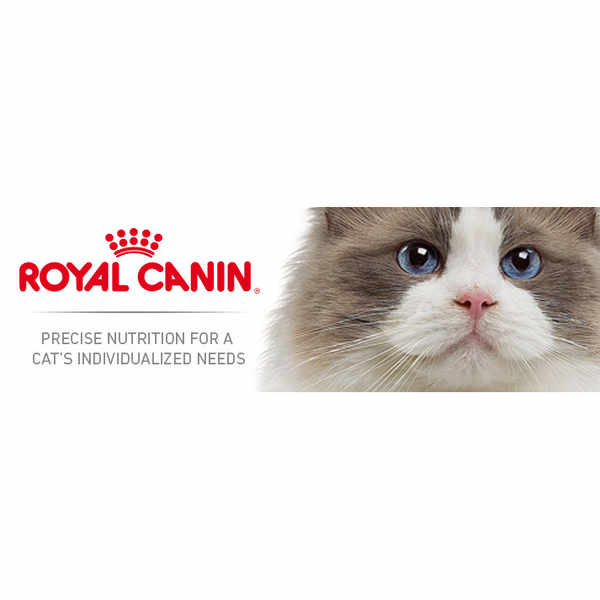 Enjoy a £5 Off Royal Canin Cat Food Coupon