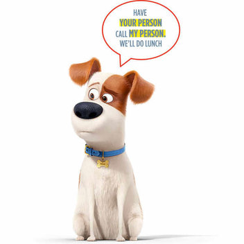 Free Chloe & Max Secret Life of Pets watches
