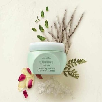 Free Aveda Tulasara Renew Morning Cream