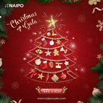 Naipo Christmas Gala
