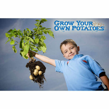 Free Grow Your Own Potatoes kit