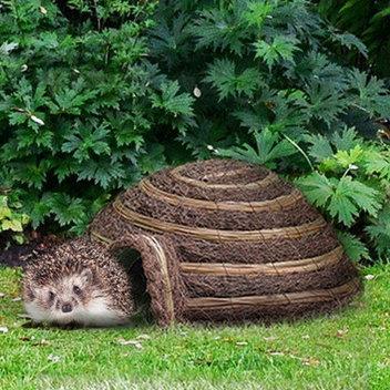 Claim a free Wildlife World Igloo Hedgehog House
