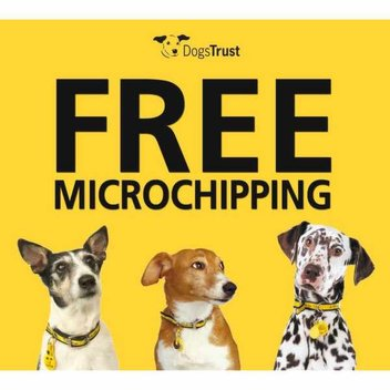 Get your best friend(dogs) microchipped for free