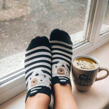 Free FunShopTime socks