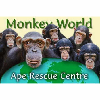 Free entry to Monkey World on Halloween