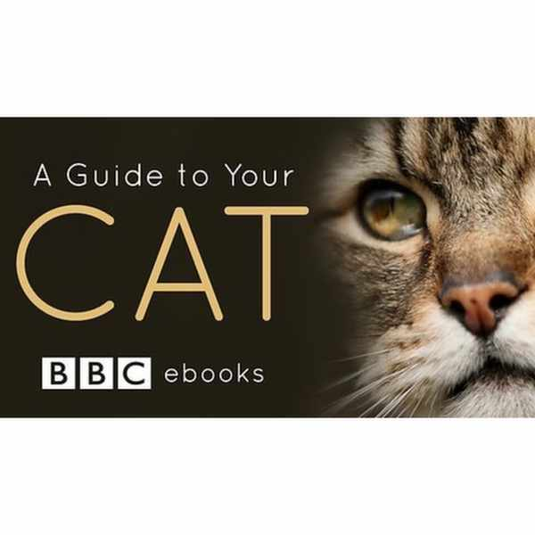Get a free Guide to Your Cat interactive ebook