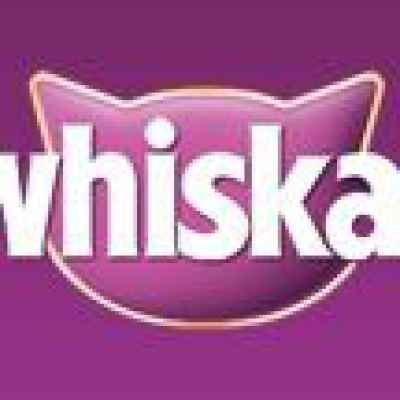 Tempt your cat with a free pack of Whiskas Temptations