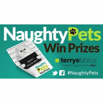 Win £500 through your Naughty Pets