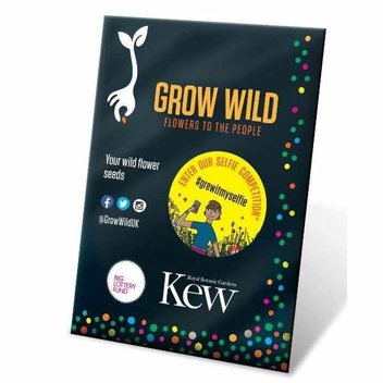 Free packet of wild flower seeds