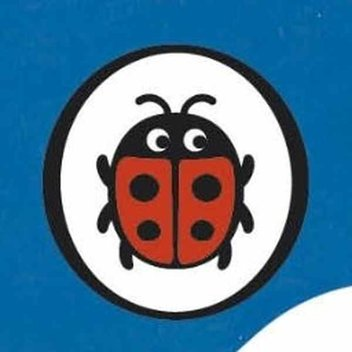 Ladybird Christmas activity pack