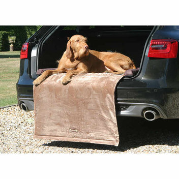 Win 1 of 10 pairs of dog beds from Scruffs, worth over £100