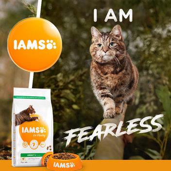 8,000 free IAMS for Vitality pet food