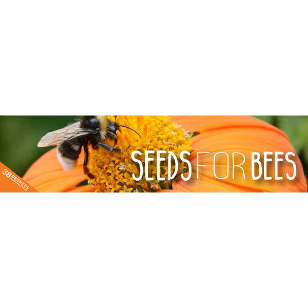 Free Wildflower Seeds to save the bees