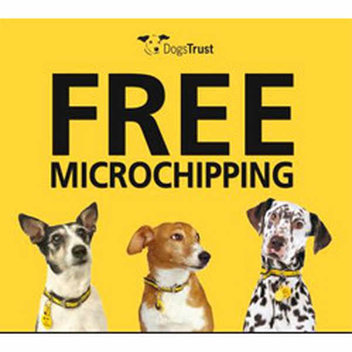 Free Microchipping for your dog