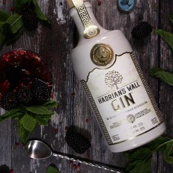 Snap up 1 of 3 Hadrian's Wall Gin prizes