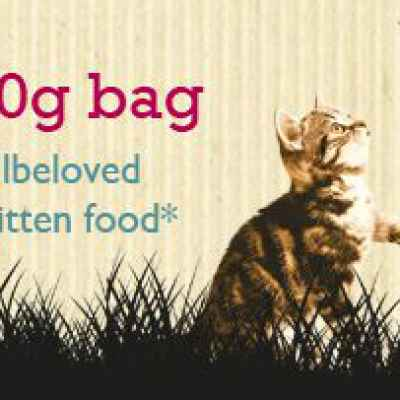 Free James Well Beloved Dry Kitten Food