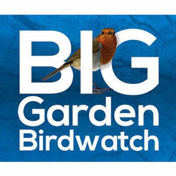 Free RSPB Big Garden Birdwatch Pack