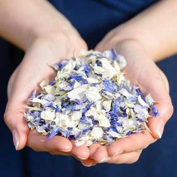 Free Wedding Petal samples