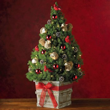 Take home a free Mini Christmas Tree