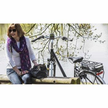 Win a Raleigh electric bike worth £2000