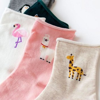 Free Mooshe socks