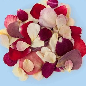 Claim free Sweet Colours rose petals