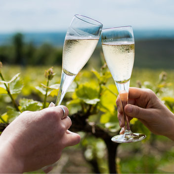 Go on a Holiday to Reims & Champagne Tour for 2
