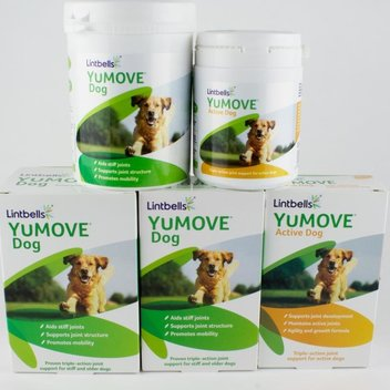 Get a YuMOVE Active Dog Food treat tpday