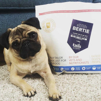 Treat your dog to free tailor-made dog food