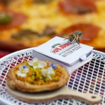 Free bee friendly wildflower seeds with Papa John's