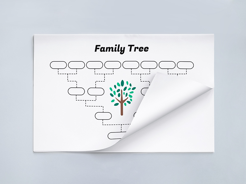 simple family tree template vector freebie supply