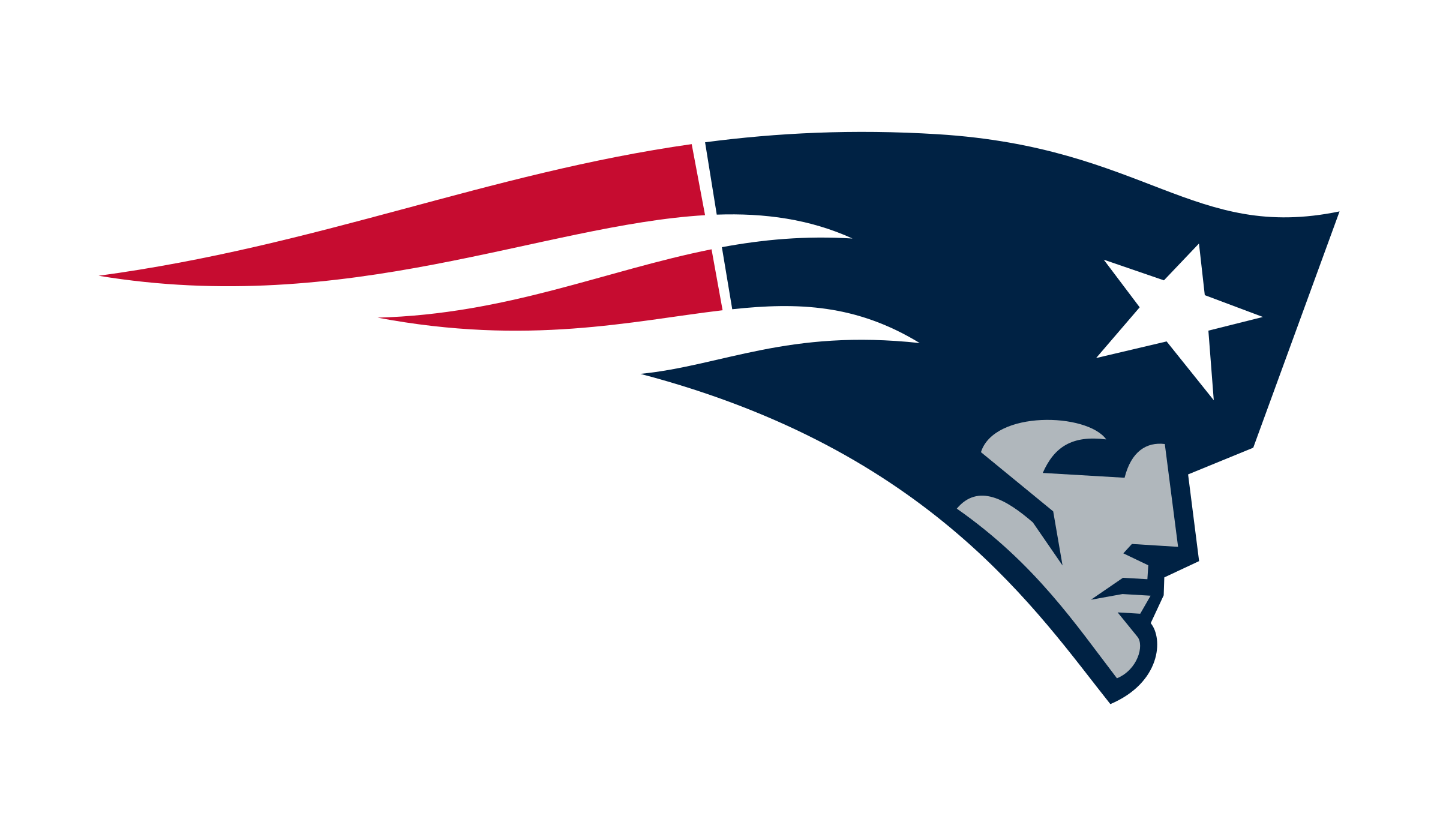 Image result for patriots logo png