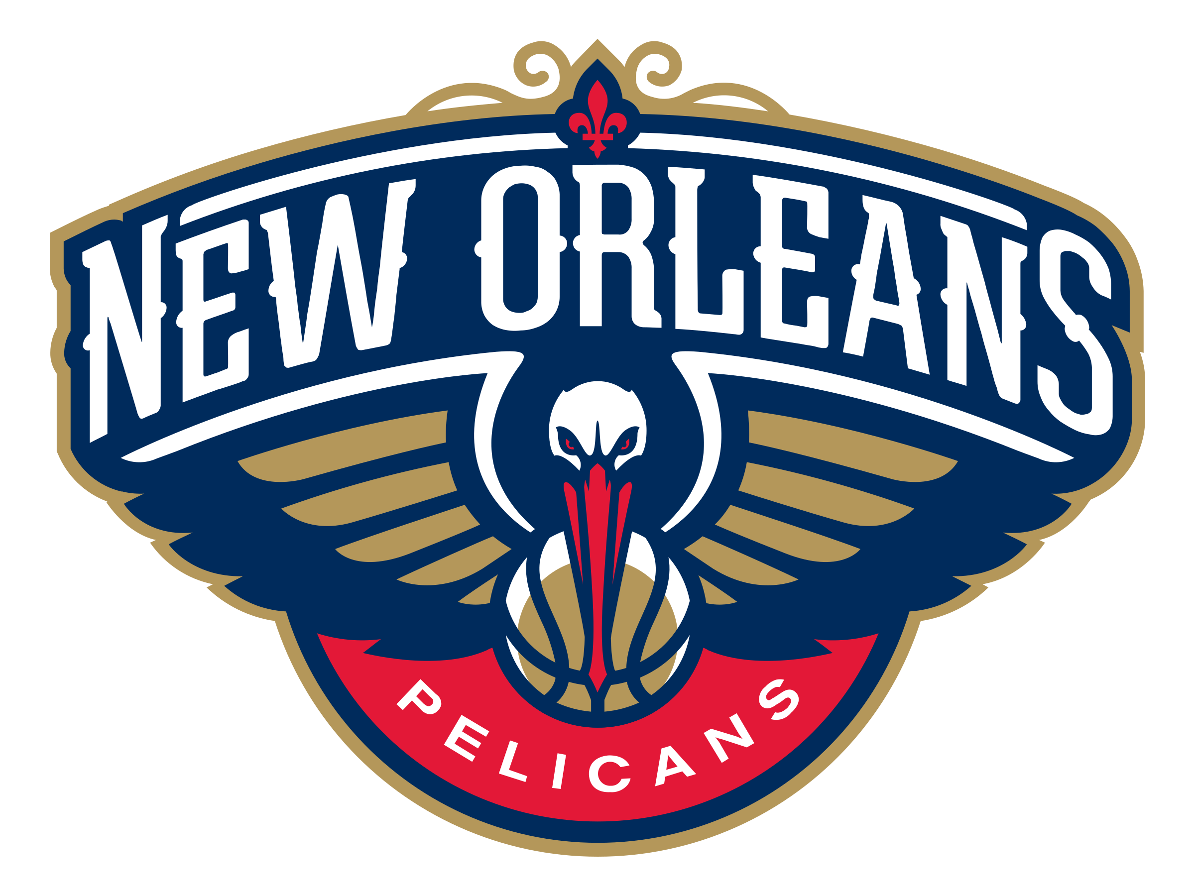 Image result for pelicans logo